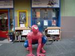 hermke_spider